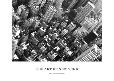 The Art of N.Y.